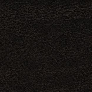 Spider t.moro KL12 (donker bruin)